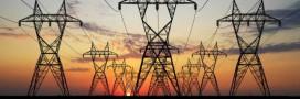 Face au défi énergétique, les pays de l'OCDE avancent en ordre dispersé