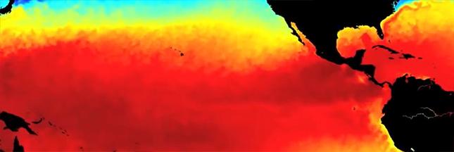 Zoom sur le réchauffement climatique (4)