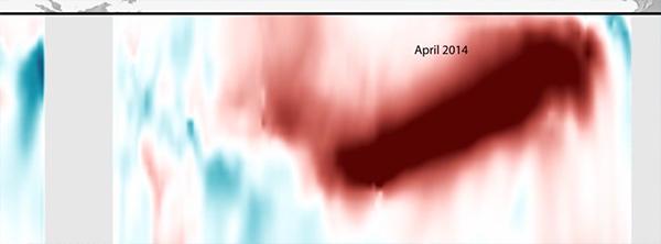 el-nino-climat-pacifique-temperatures-2014-07