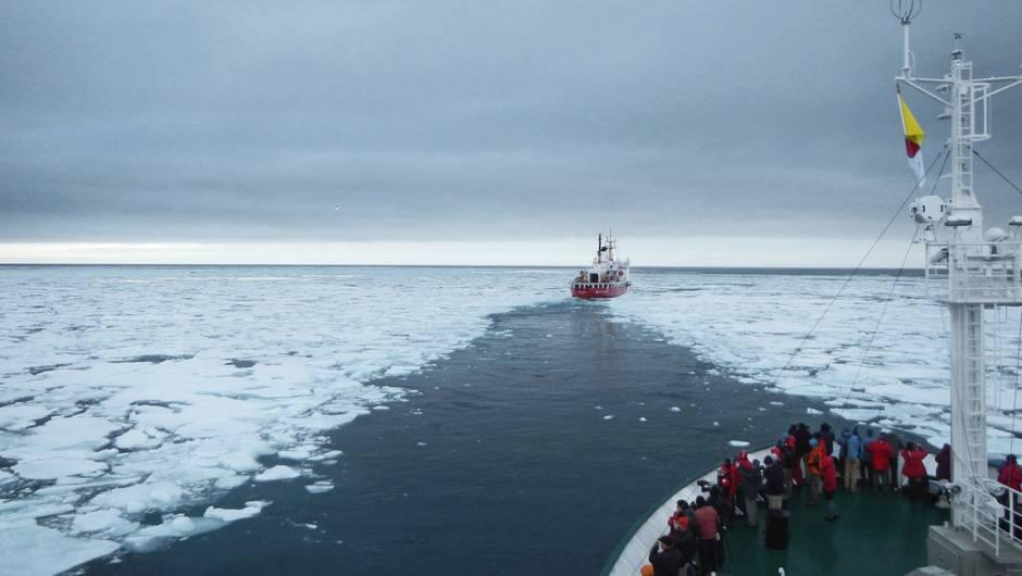 polar-sea-brise-glace