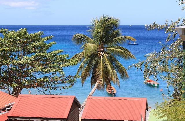 martinique île énergie positive énergies renouvelables fossiles