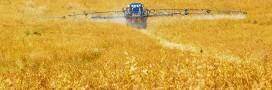 Ecophyto – Réduire les pesticides: mission impossible en France?