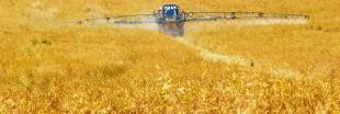 Ecophyto - Réduire les pesticides: mission impossible en France?