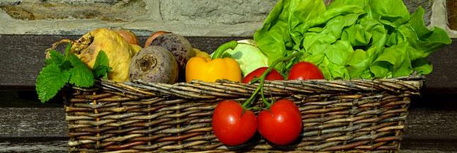 Alimentation durable : la France arrive en tête du classement