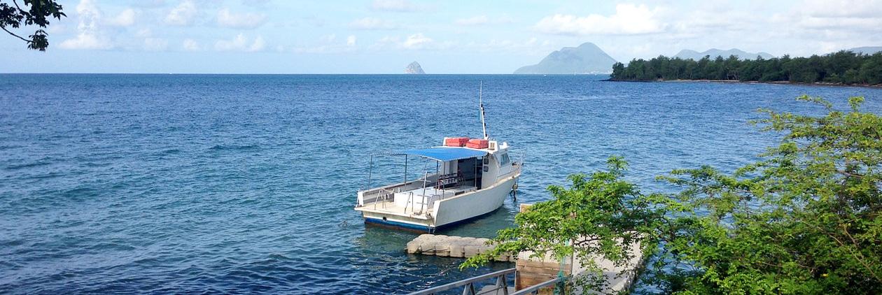 Martinique : vers une île à énergie positive ?