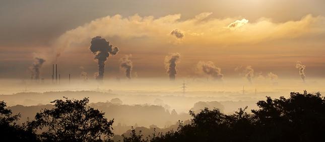 arbre-parc-environnement-nature-paysage-herbe-foret-industrie-03