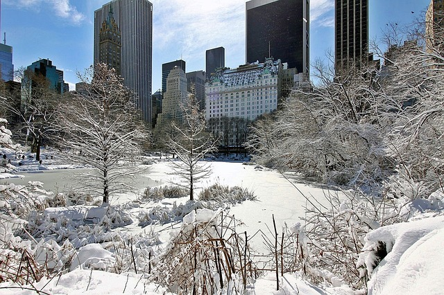 central-park-new-york-froid-hiver-neige-03