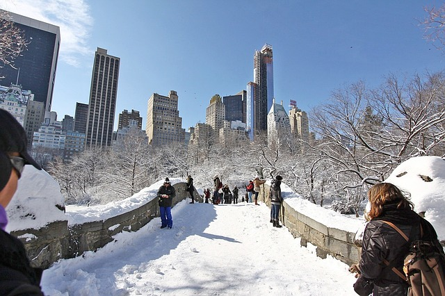 En photos new york dans la glace quand la nature for Things to do in nyc in winter