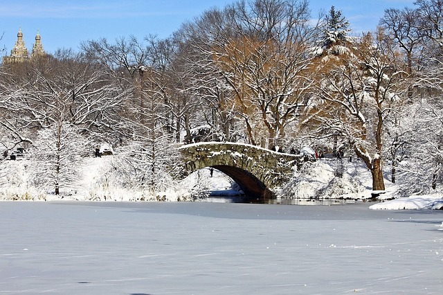 central-park-new-york-froid-hiver-neige