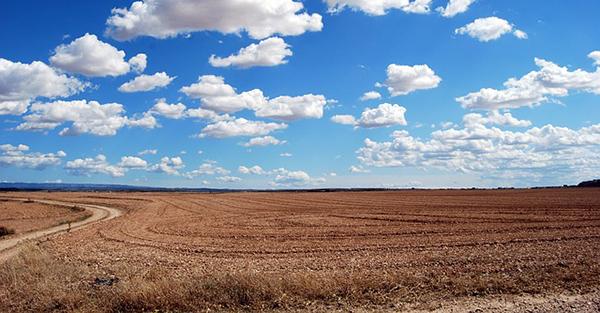 champ-ciel-campagne-agriculture-agroecologie-ecophyto-lutte-contre-les-pesticides-01
