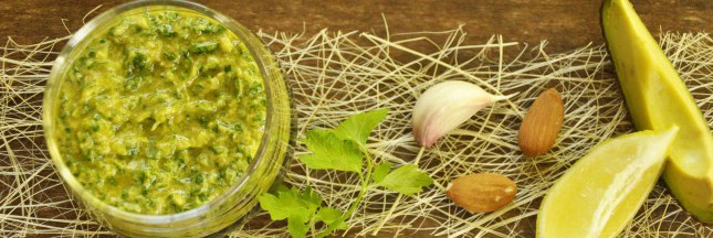 Recette bio : crème onctueuse de persil et avocat