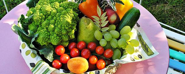 amap-panier-légumes-fruits-jardin-01