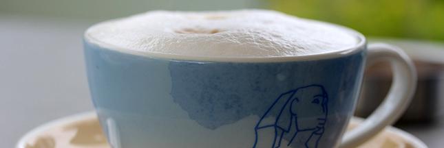 cafe-au-lait-lait-produits-laitiers-01-ban