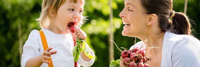 Le radis, cocktail détonnant de vitamines et oligo-éléments