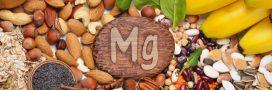 Les aliments riches en magnésium