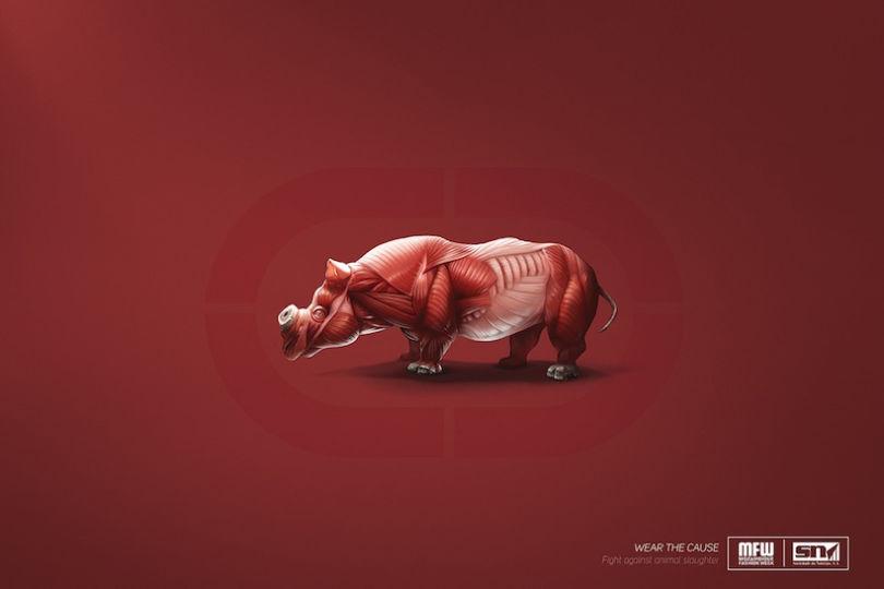 Le rhinocéros de Eckō écorché