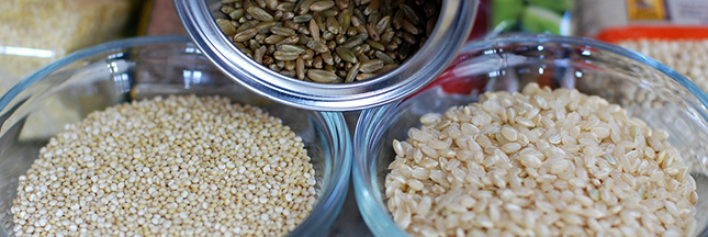 Le Quinoa, «mère des graines»