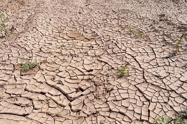 sécheresse-réchauffement-climatique-chaleur-désert.jpg
