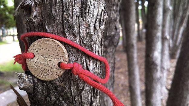 treez-projet-reforestation-agroforesterie-01