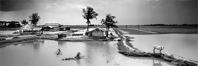 L'impact du changement climatique au Bangladesh : reportage photo de Jules Toulet