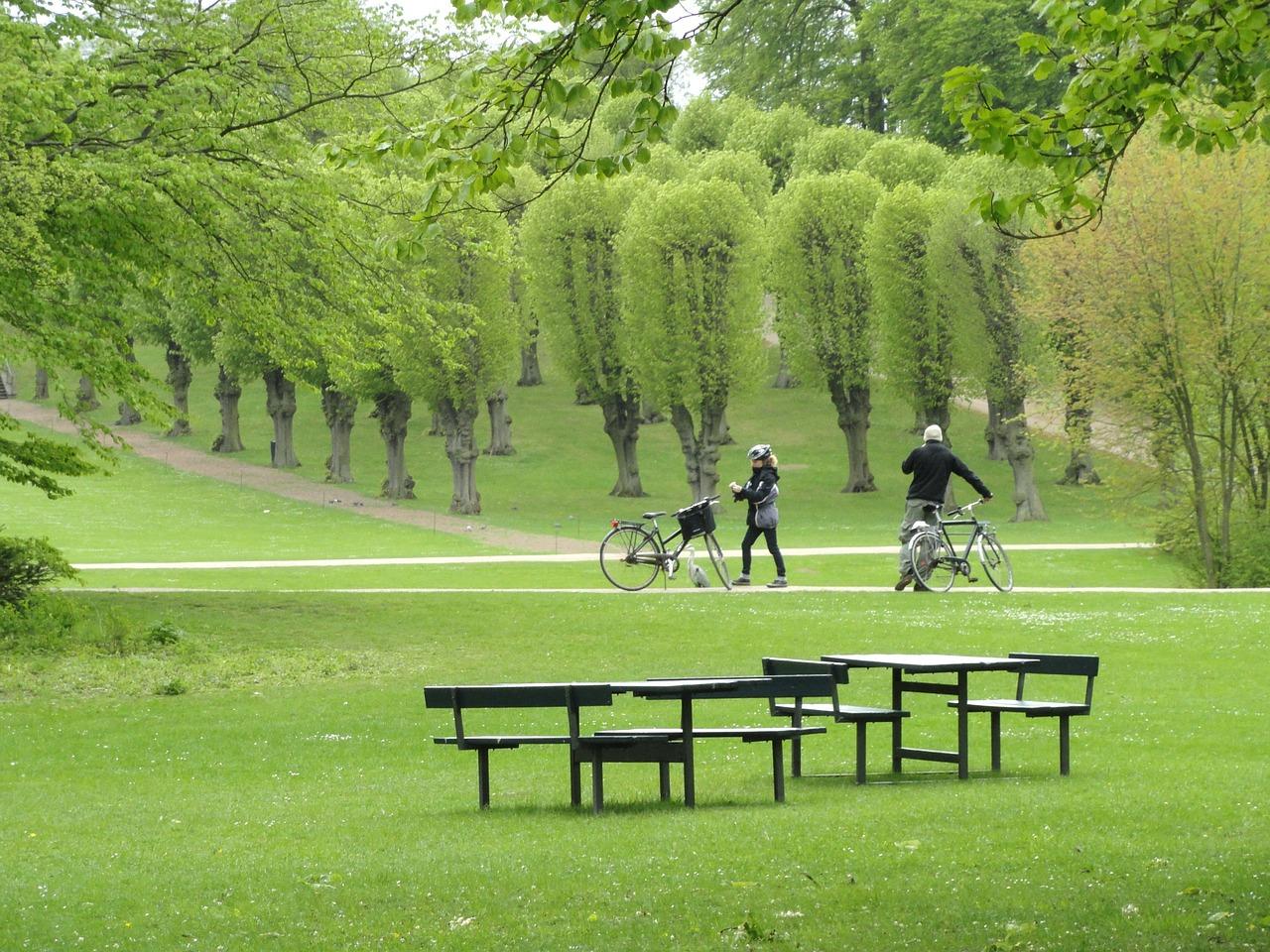 Les parcs sont nombreux dans la ville de Copenhague, qui donne la part belle aux cyclistes