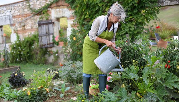 incroyables comestibles incredible edible potager urbain jardin partagé légumes de saison abondance partagée