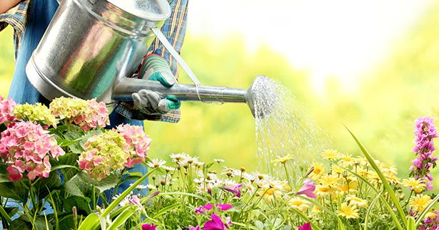 jardin naturel france jardinage bio