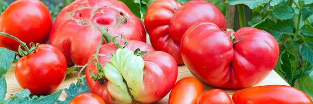 La campagne française pour les fruits et légumes moches conquiert les USA