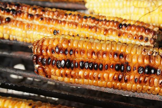 barbecue végétarien maïs