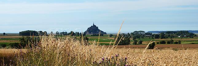 Au prieuré du Mont Saint-Michel les pionniers mènent un camp écolo de A à Z