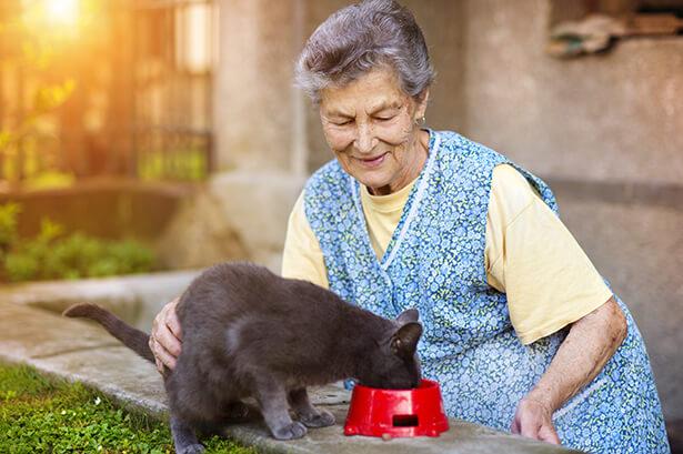 garde animaux particuliers retraités