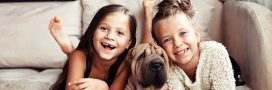 Faire garder ses animaux domestiques: garde entre particuliers pendant les vacances