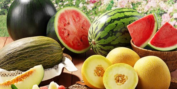 Vivre en été fruits