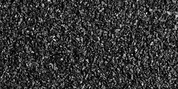 charbon de bois amazonie terra preta engrais