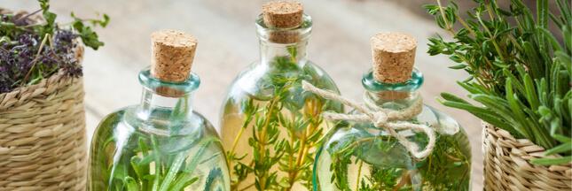 Vins et élixirs de santé : mettez le jardin en bouteilles !