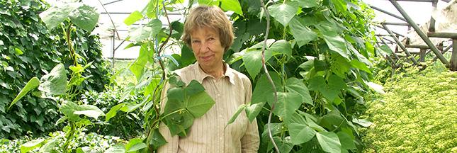 Trucs et astuces d'une spécialiste des tomates bio
