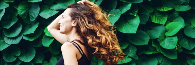 cheveux naturels thym