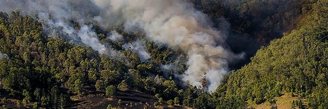 Peut-on vivre une année sans feux de forêt en Europe ?