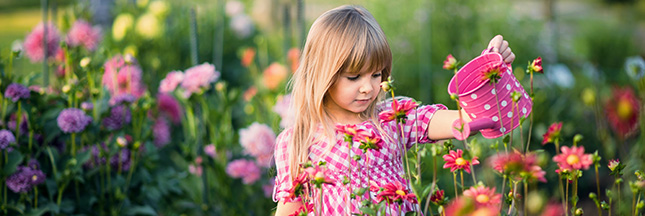 astuces conseils jardinage contre un sol pauvre engrais naturel