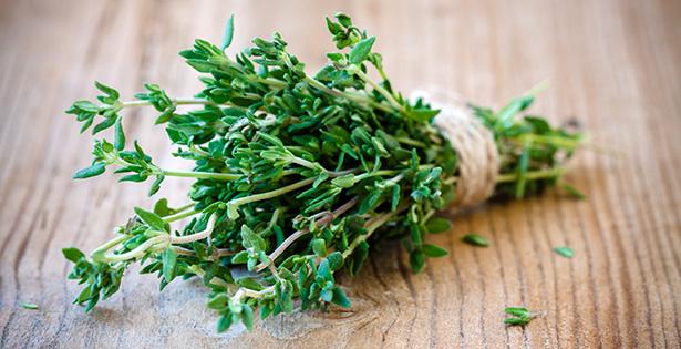 thym verveine guimauve plante santé vin élixir
