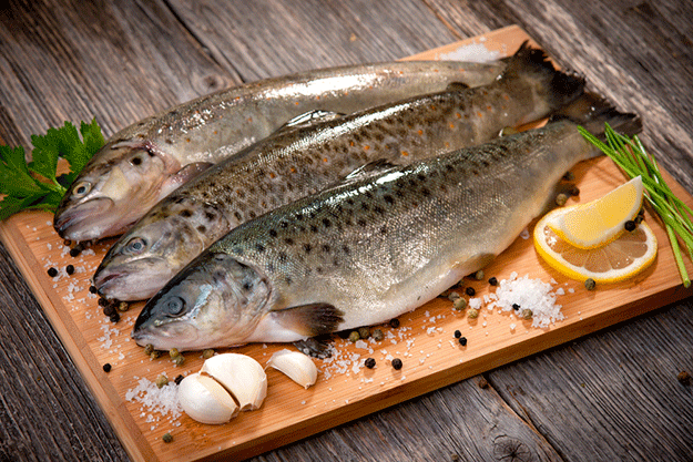 shutterstock-poisson-truite-ete-mer-ocean-peche