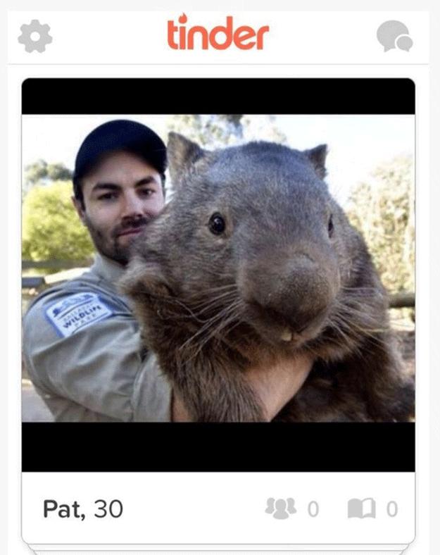 tinder-partrick-wombat-marsupial-amour