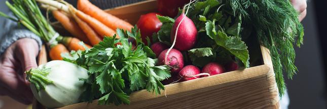 7 astuces pour se nourrir moins cher