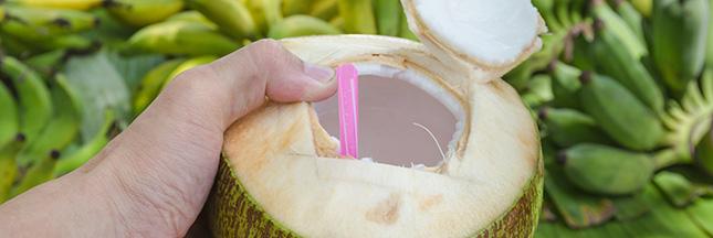 Eau de coco : la boisson bienfaisante