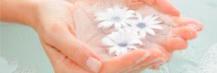 Les eaux florales ou hydrolats pour soigner la peau