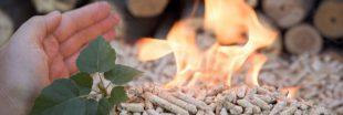 Ces substances que nous cachent... pellets et granulés de bois