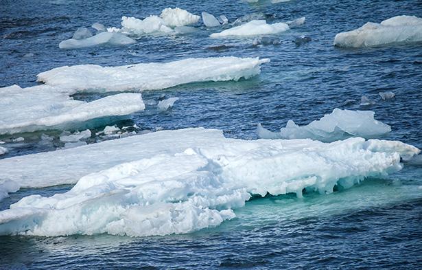 pétrole arctique forage pétrolier shell