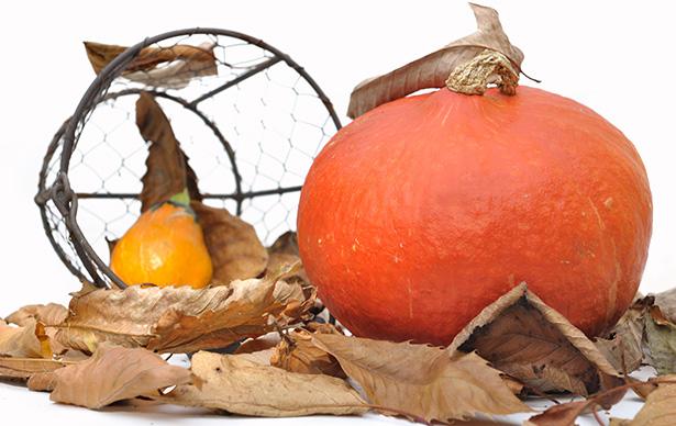 Le potimarron, une courge à la saveur subtile © sanddebeautheil - Shutterstock