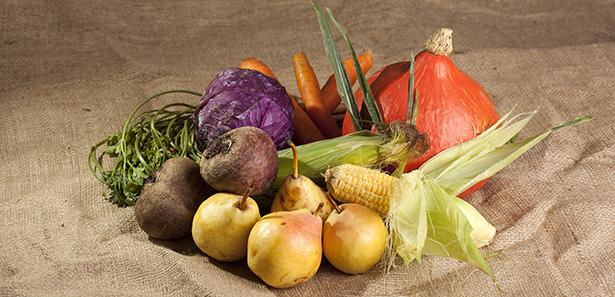 légumes bio manger france