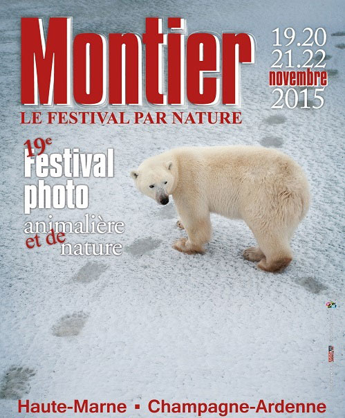 sorties-vertes-festival-photos-animalieres